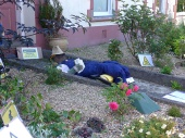 Health and safety scarecrow!